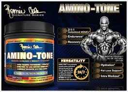Ronnie Coleman Amino-Tone aminósav-készítmény por 390g (BCAA, zsírégető komplex, elektrolitokkal)